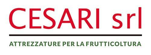 Cesari Srl Logo